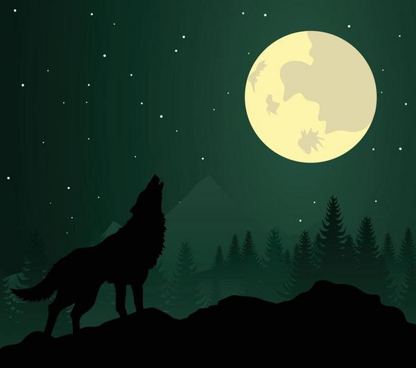 Hvad er gys og gru  aktivitet  ulveunde  colourbox com