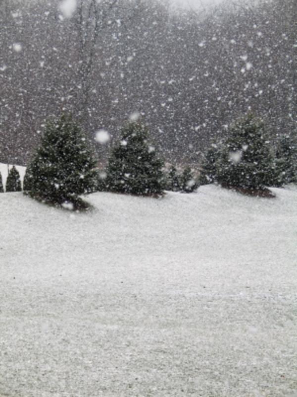 Sne  iStock 000001528620XSmall